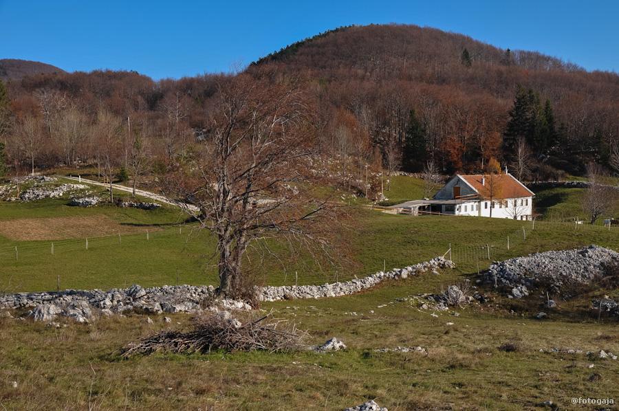 20121117-DSC_0266