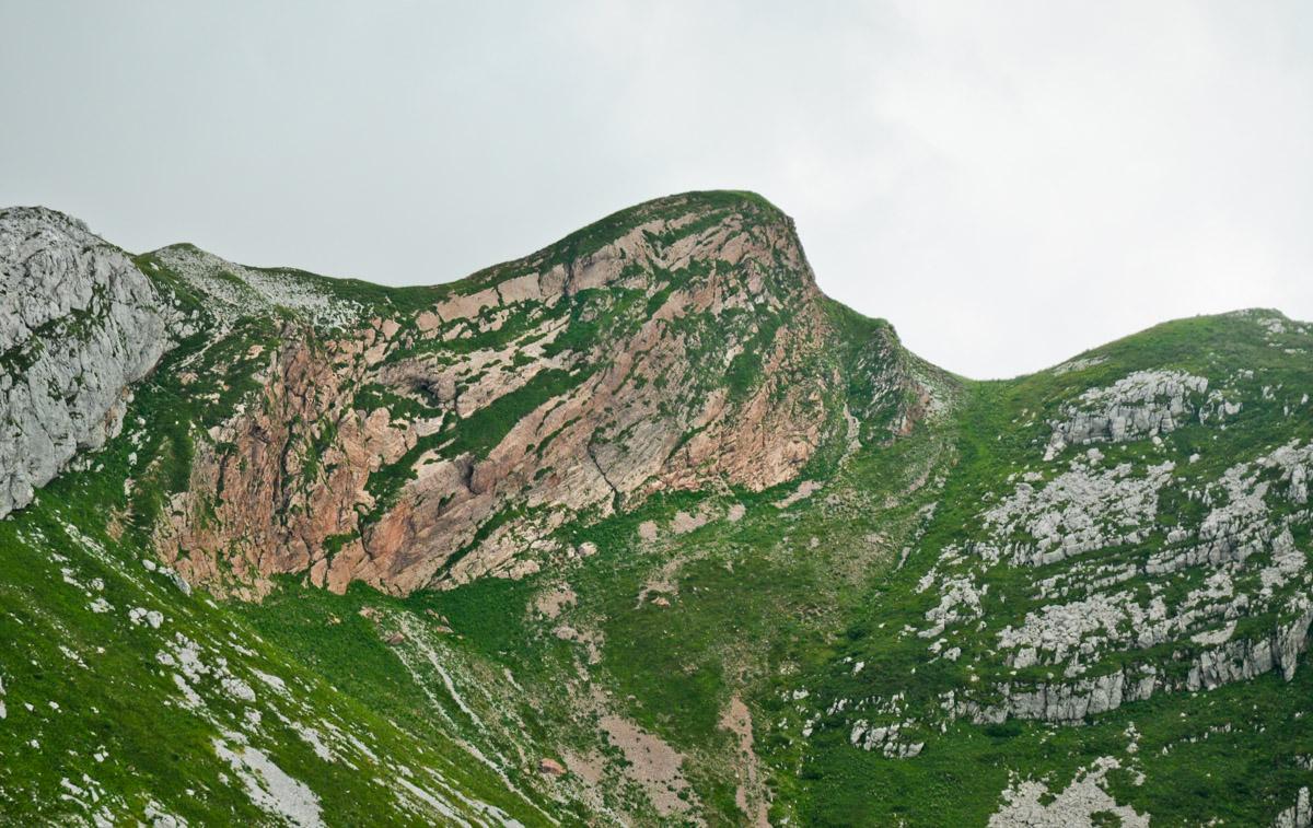 20100728-teren-luznica_rdeci_rob-31